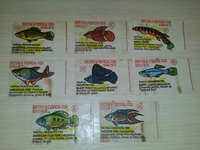 Anglo British & Tropical Fish 8 шт