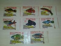 Anglo British & Tropical Fish 8 шт